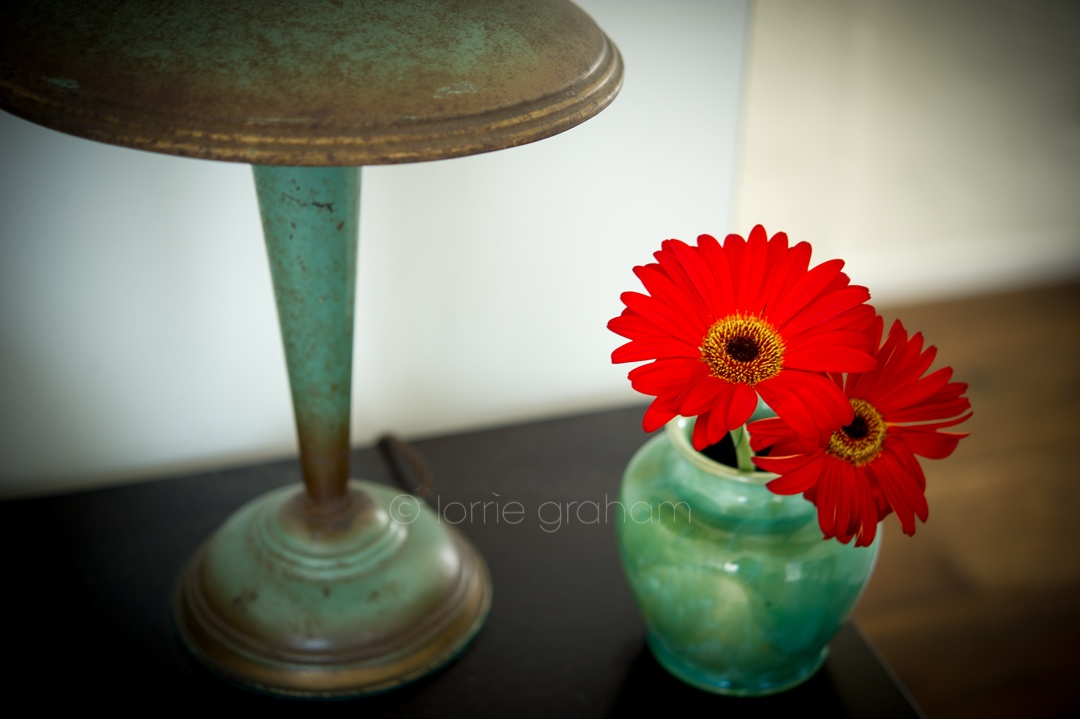 Newtown Lamp and Gerberas