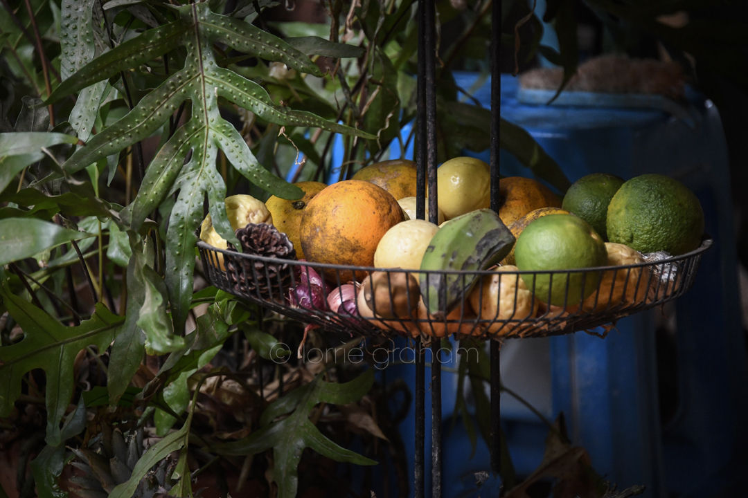 Casa Los Mangos, in is the only place to stay in Trinidad Cuba. I know this is a huge call, but from the moment you contact Fiona Wilson you will know what I mean. © Lorrie Graham