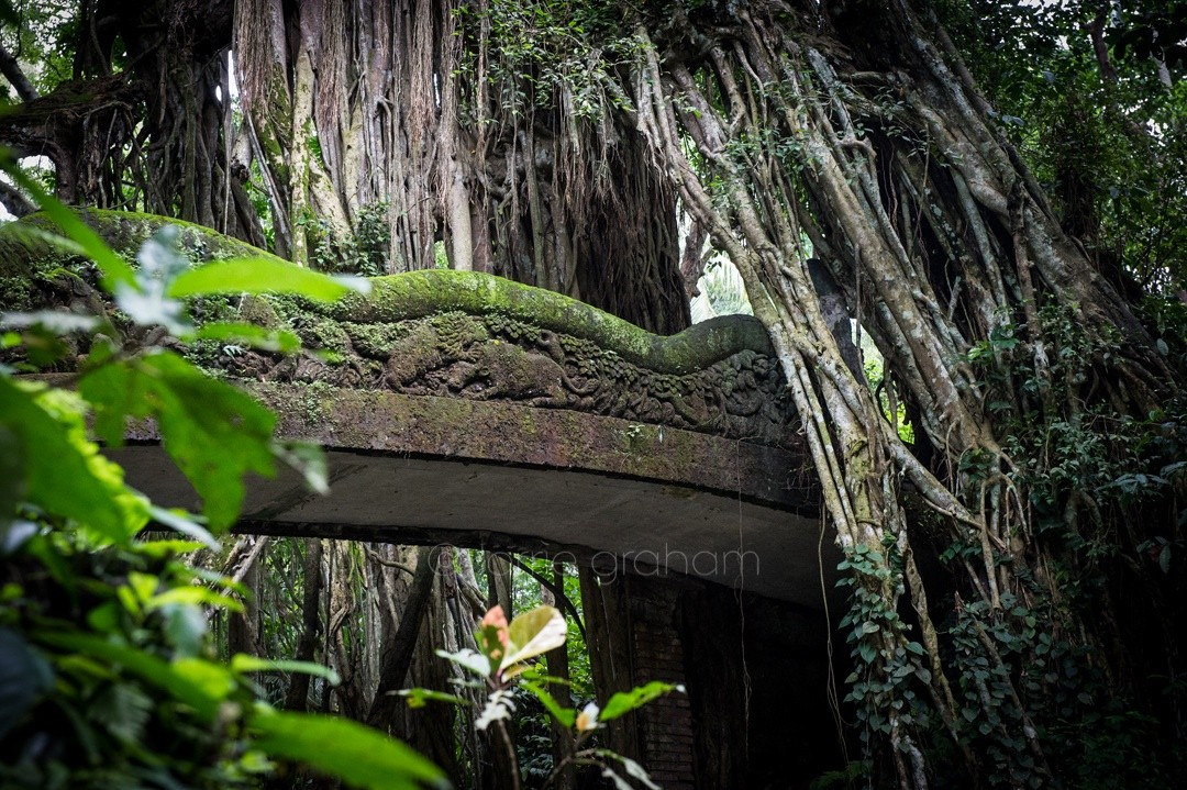 A selection of images from the Holy Spring Temple in Monkey Forest, Ubud