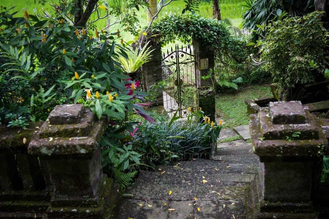 Gateway to the Rice fields outside the Ananda Cottages Annexe, Ubud, Bali