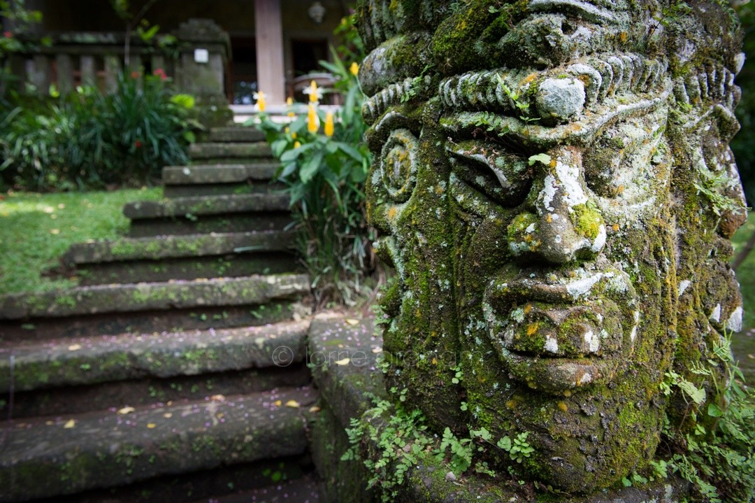A selection of images from the second annex area at Ananda Cottages, Ubud, Bali