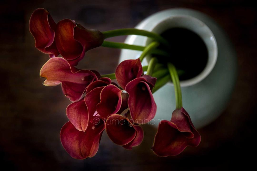 Flowers 13.05.2014_0022